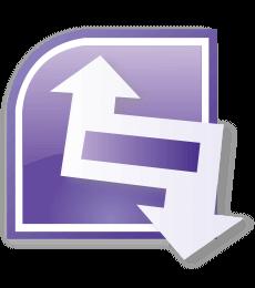 Microsoft Infopath 2007